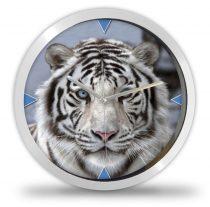 Tigrises falióra