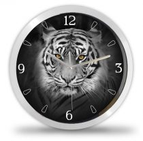 Tigris falióra